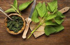 5 рецептов полезных блюд с зеленью!