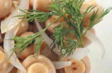 Грибочки, маринованные по-домашнему — удачный и быстрый рецепт!