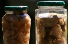 Маринованные моховики — результат Вас удивит!