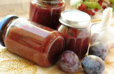 Соус «Сацебели» из слив — в меру острый, очень пряный, очень вкусный!