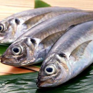 «Рыбные секреты» — надо знать!!!