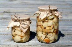 Маринованные белыегрибы — самые вкусные на свете!