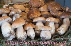 Белые грибы с помидорами — роскошное блюдо!